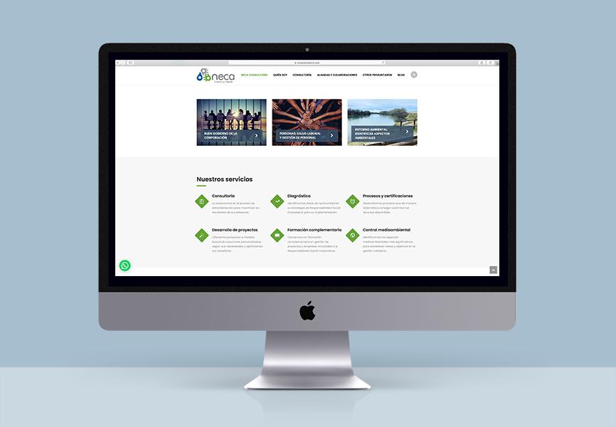 diseño web Neca